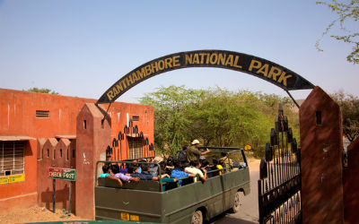 New Safari Booking System in Ranthambore
